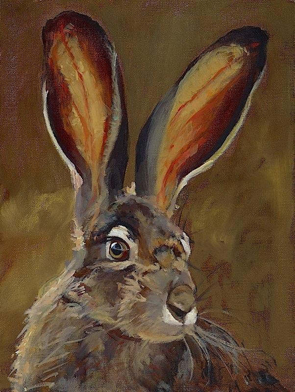 Jack O' Rabbit