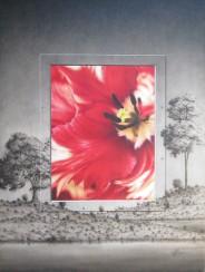 Tulip Portal