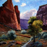 Vivid Canyon