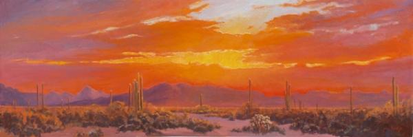 Desert Colors Sunset