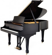 Steinway  A Player Grand