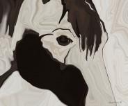 Paint Horse Eye